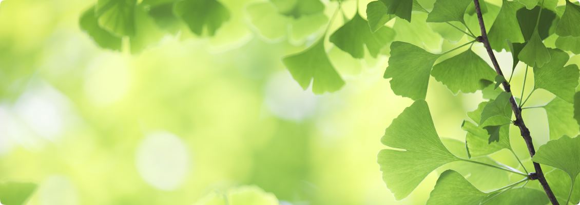 Natural-Investing-Homepage-Showcase-1130px-Gingko-Blank